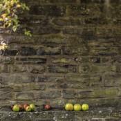 hidden-treasures-apples-on-the-wall